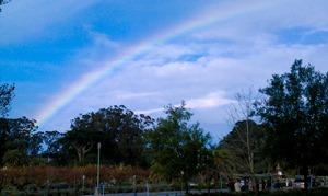 Golden Gate rainbow